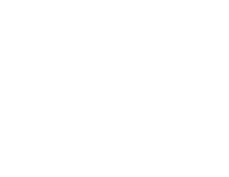 Recruiting, retaining and supporting General Practitioners (GPs), Nurses and Allied Health Professionals in rural New South Wales, Australia